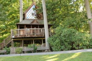 Longwood treehouse