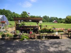 Wilbur's Farm Stand