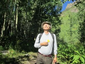 Aspen delight