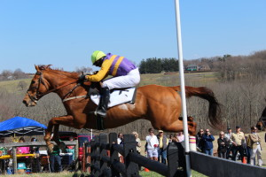 Lady's Manor Steeplechase