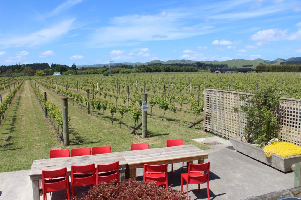 Margrain Vineyards in Martinborough NZ