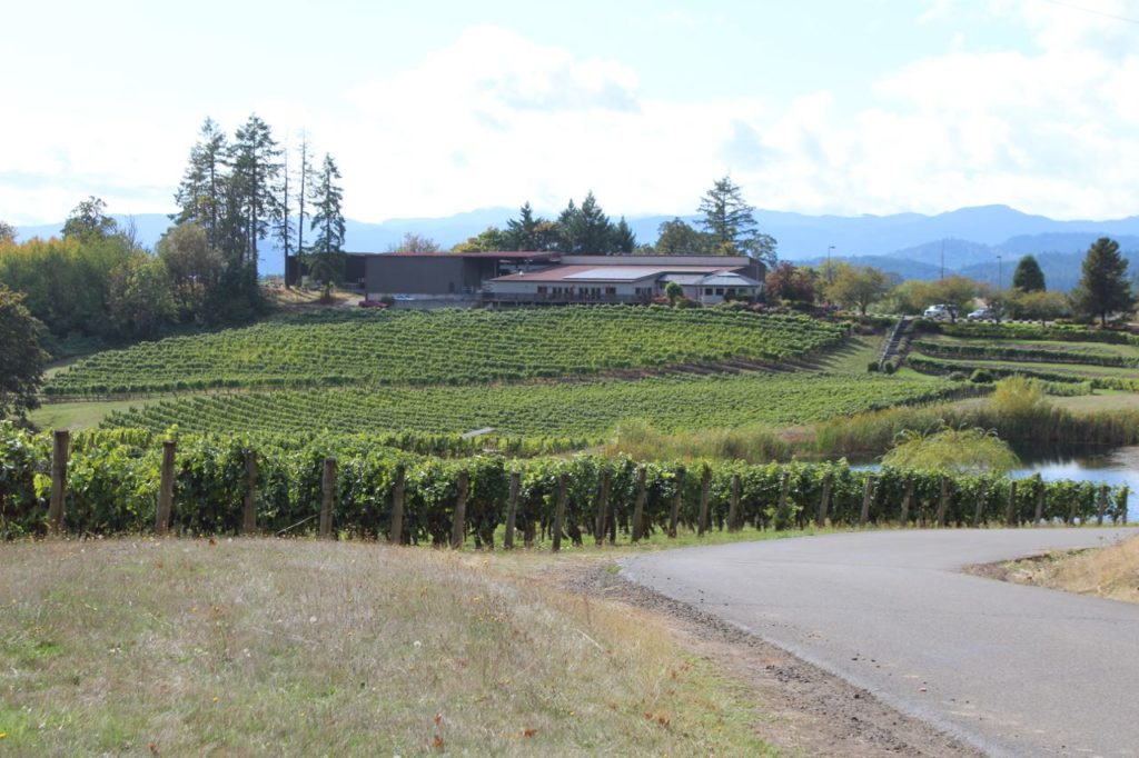 Elk Cove Vineyards, Wine Exploring Near Portland Oregon